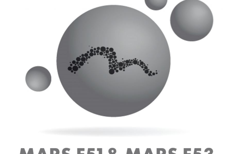 MIMETE releases new iron-base powders MARS F51 & MARS F53 for demanding applications